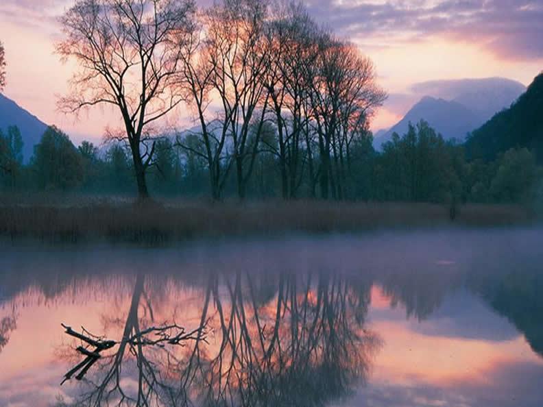 Image 1 - Naturschutzgebiet