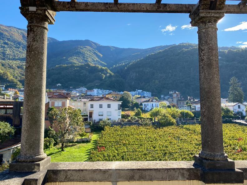 Image 9 - Museo Villa dei Cedri