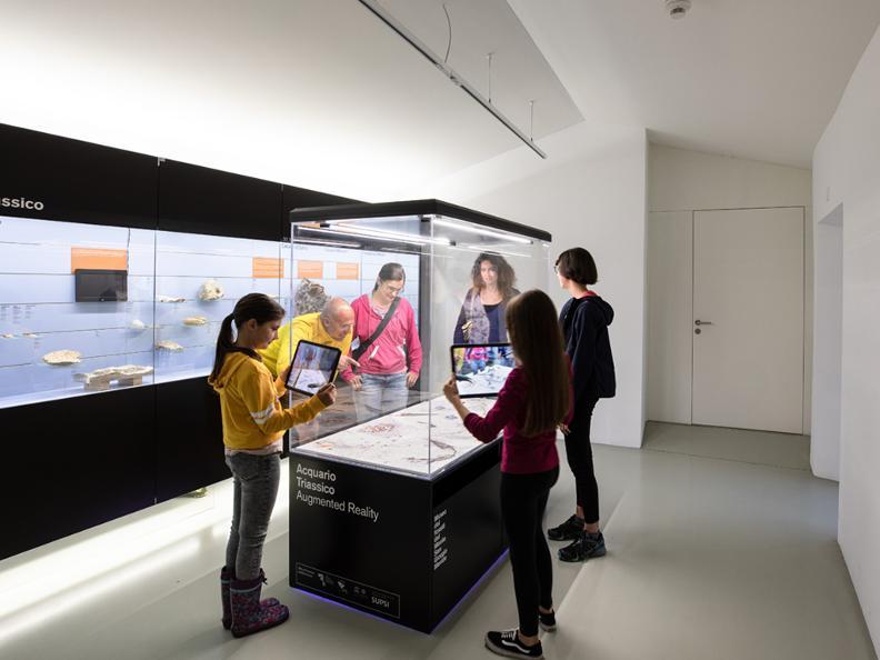 Image 2 - Musée des fossiles du Monte San Giorgio
