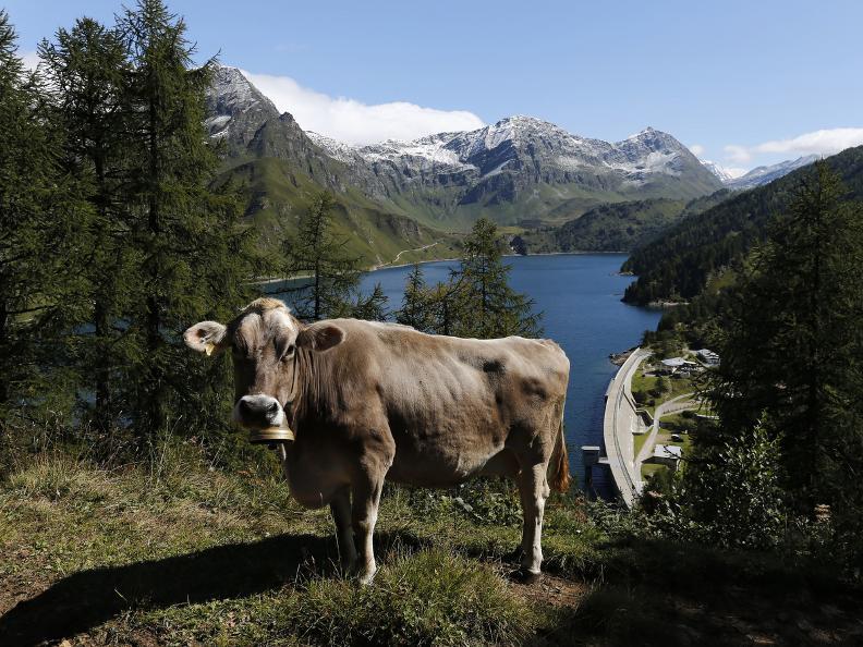Image 2 - Alpine lakes: Region Ritom - Val Piora
