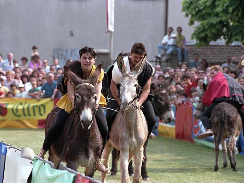 Image 0 - Donkey race