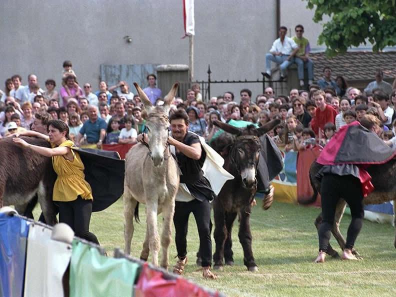 Image 1 - Donkey race