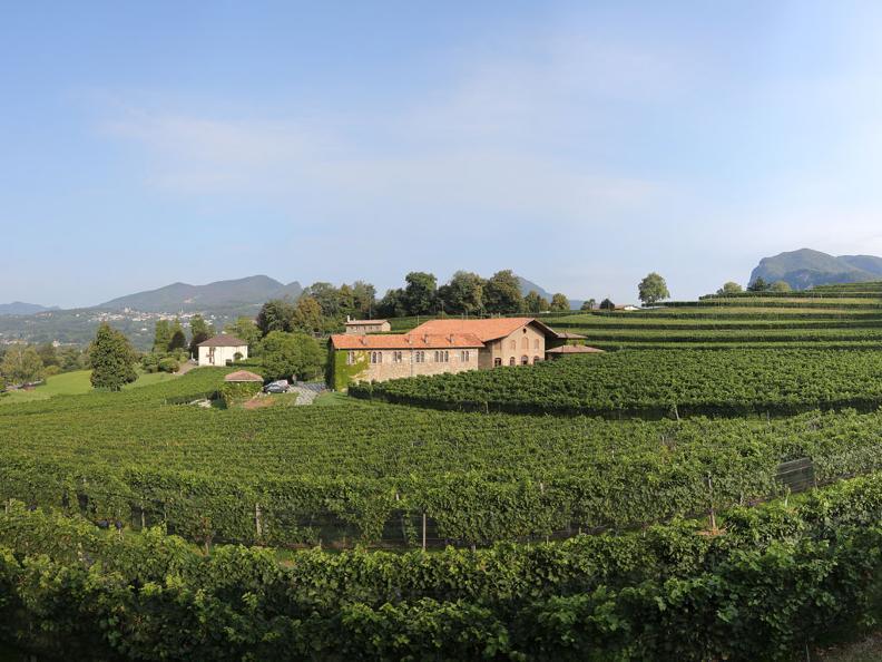 Image 1 - Ticinowine