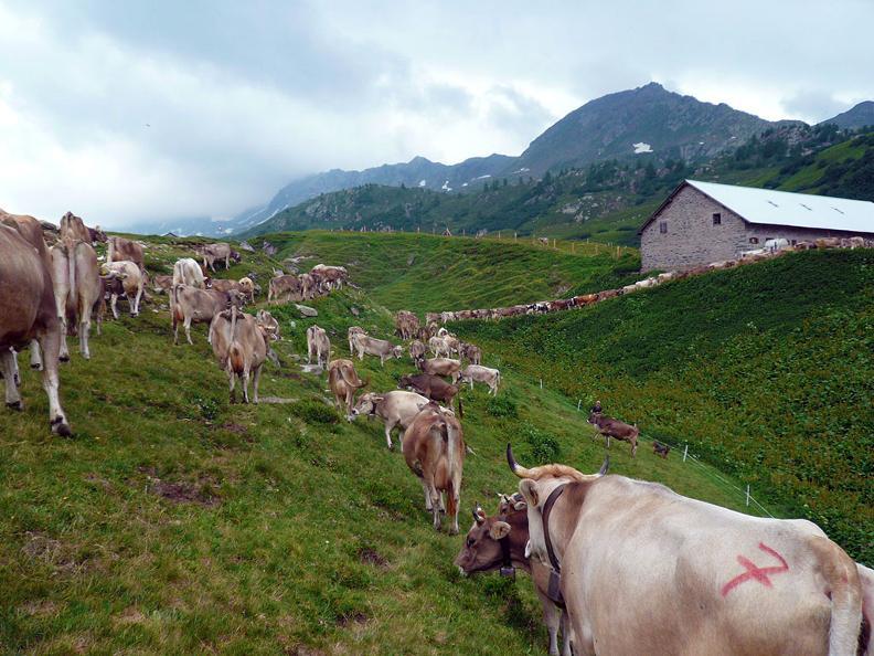 Image 6 - Alpe Piora