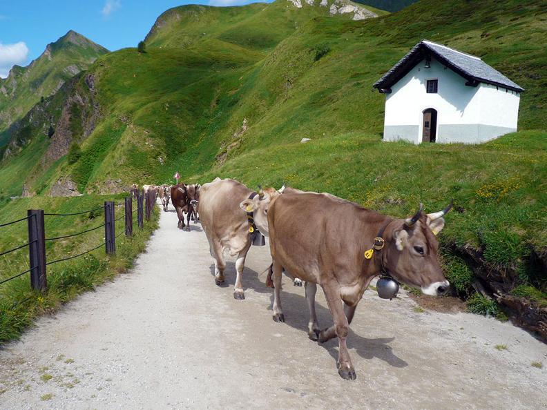 Image 0 - Alpe Piora