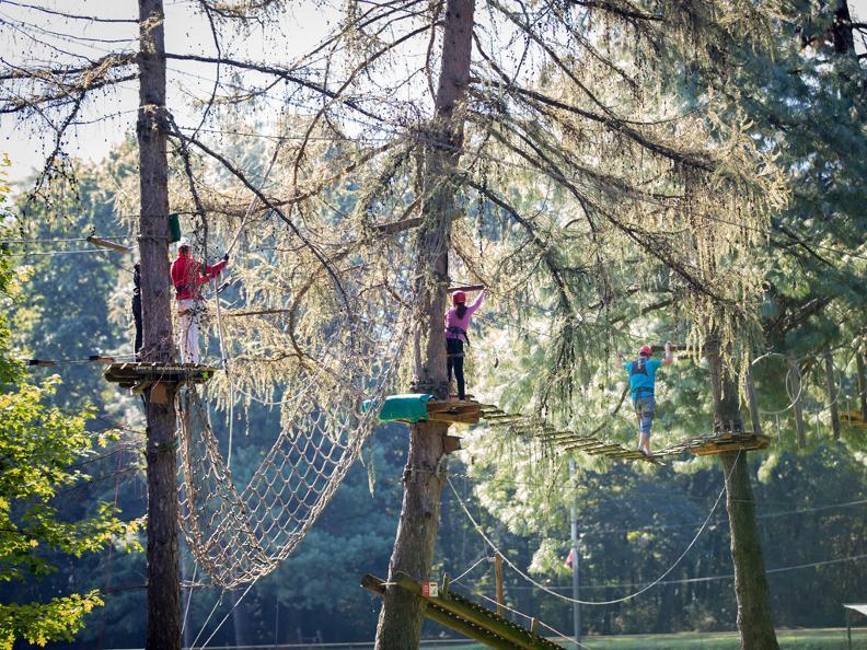 Image 7 - Parco Avventura - Seilpark Gordola