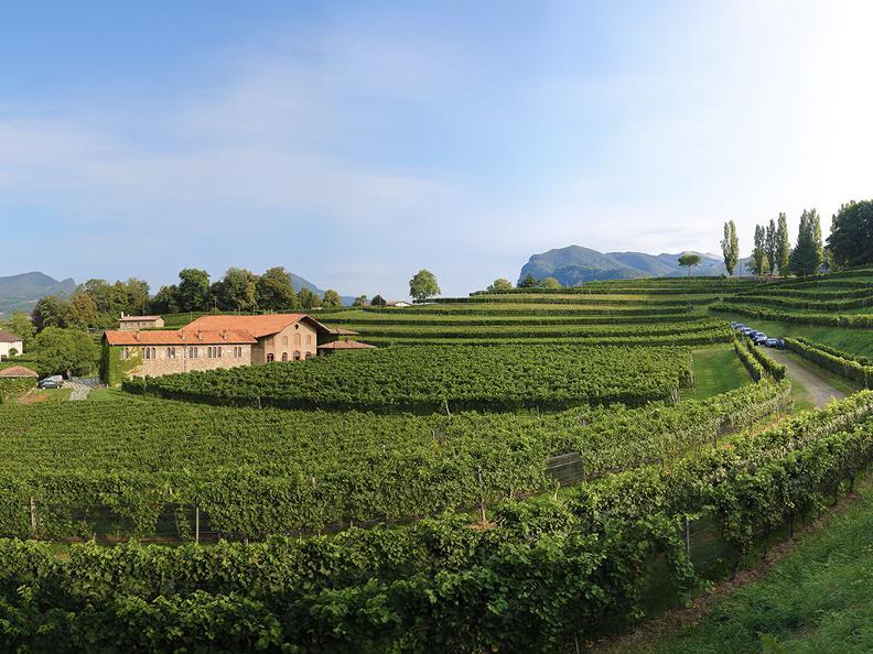 Image 2 - Le strade del vino