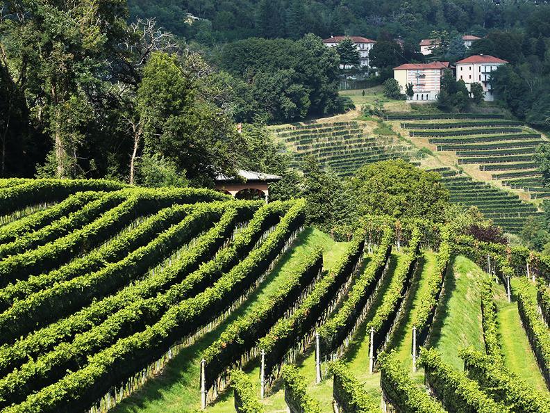Image 3 - Le strade del vino