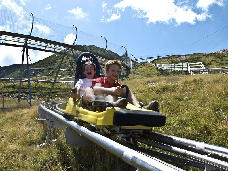 Image 3 - Alpine Coaster Bob Tamaro