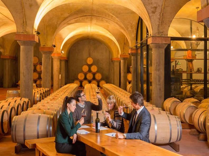 Image 2 - I vini del Ticino