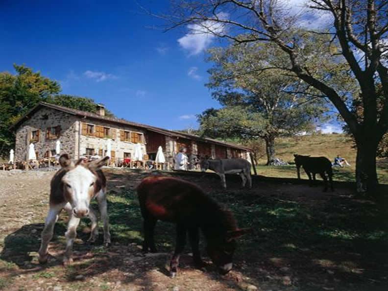 Image 0 - Urlaub auf dem Bauernhof