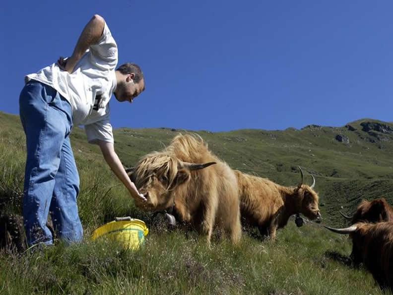 Image 1 - Urlaub auf dem Bauernhof
