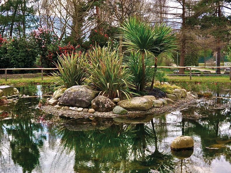 Image 1 - Kamelienpark, Locarno