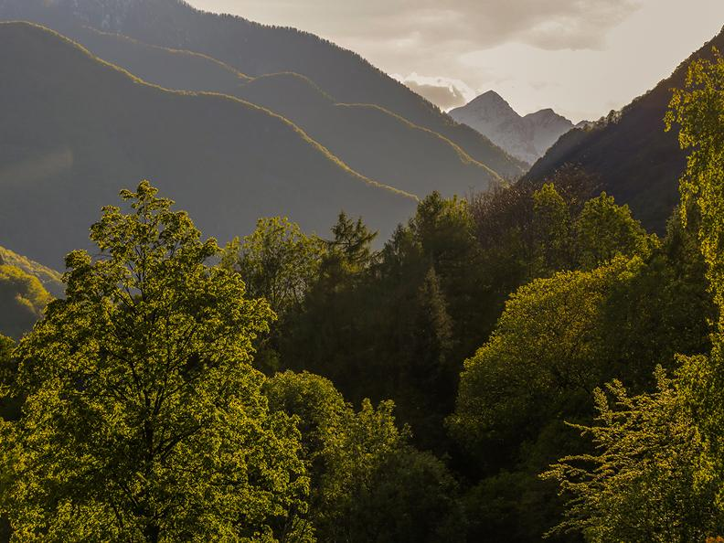 Image 1 - Onsernone Valley - Untamed nature