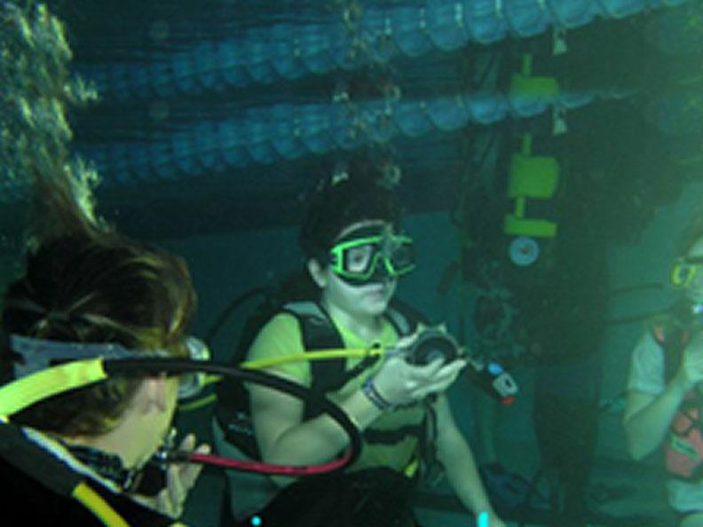 Image 1 - Pianosub Diving Center