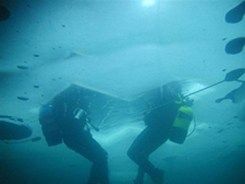 Image 2 - Pianosub Diving Center