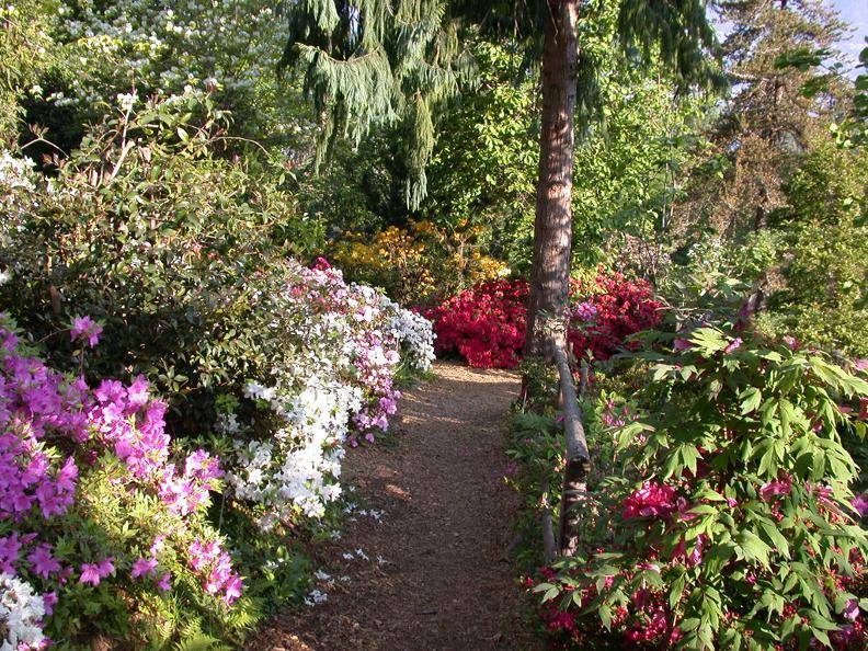Image 2 - Botanischer Garten von Gambarogno