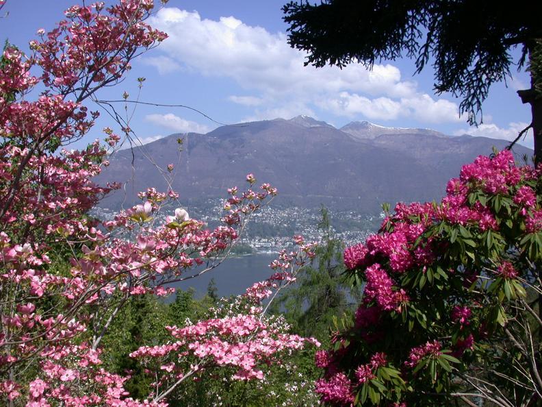 Image 1 - Botanischer Garten von Gambarogno