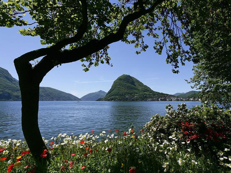 Image 4 - Parco Ciani, Lugano