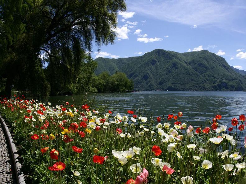 Image 1 - Parco Ciani, Lugano