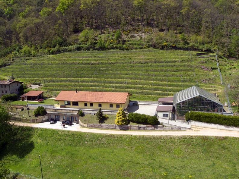 Image 0 - La Cappellaccia cantina vinicola