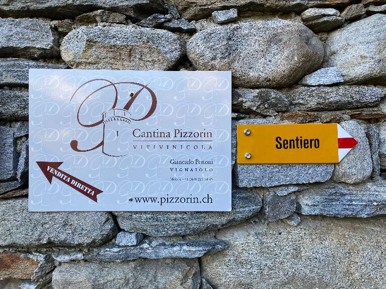 Image 6 - Cantina Vitivinicola Pizzorin
