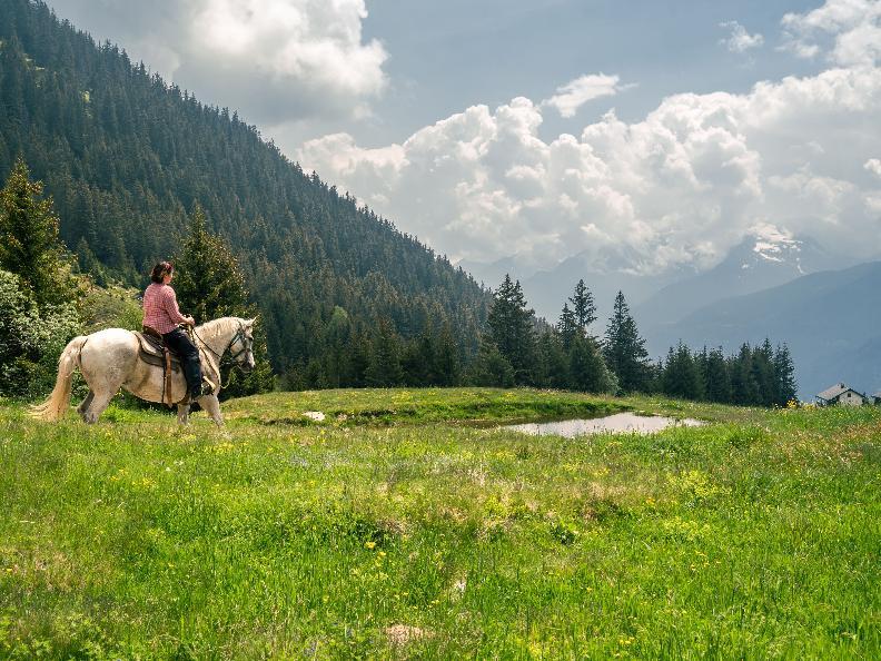 Image 10 - Equitazione in Valle Leventina: Leventina Western