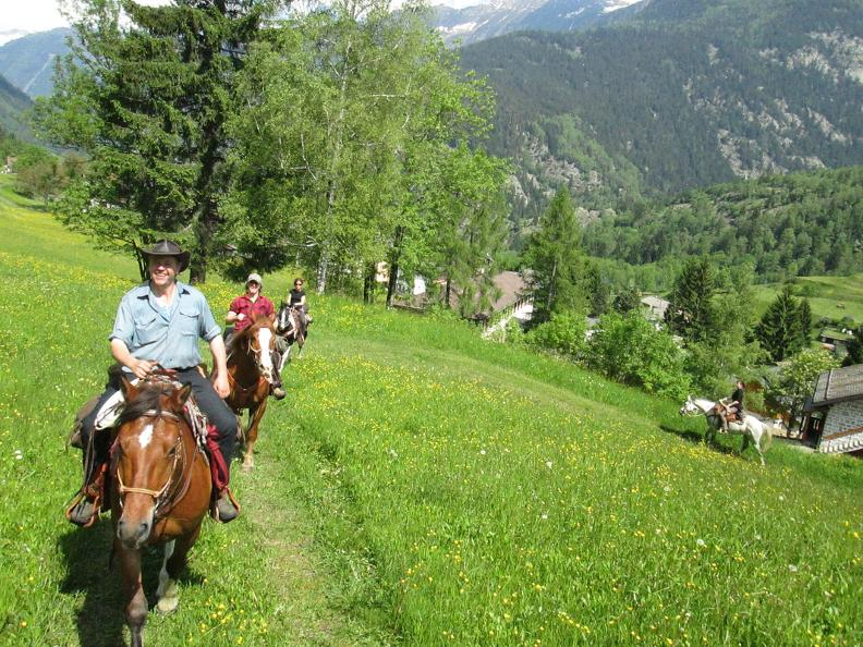 Image 4 - Horse rides in Valle Leventina: Leventina Western