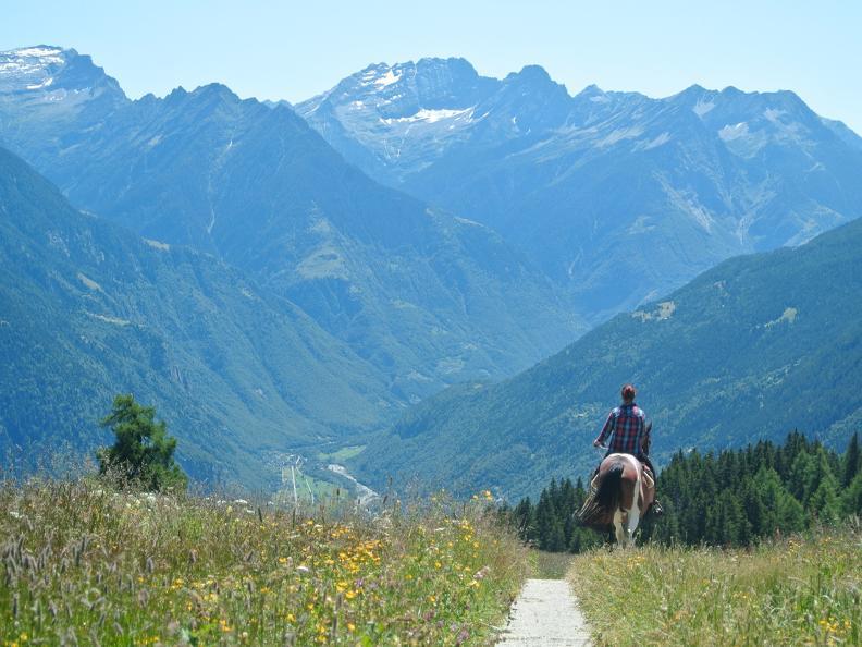 Image 5 - Equitazione in Valle Leventina: Leventina Western