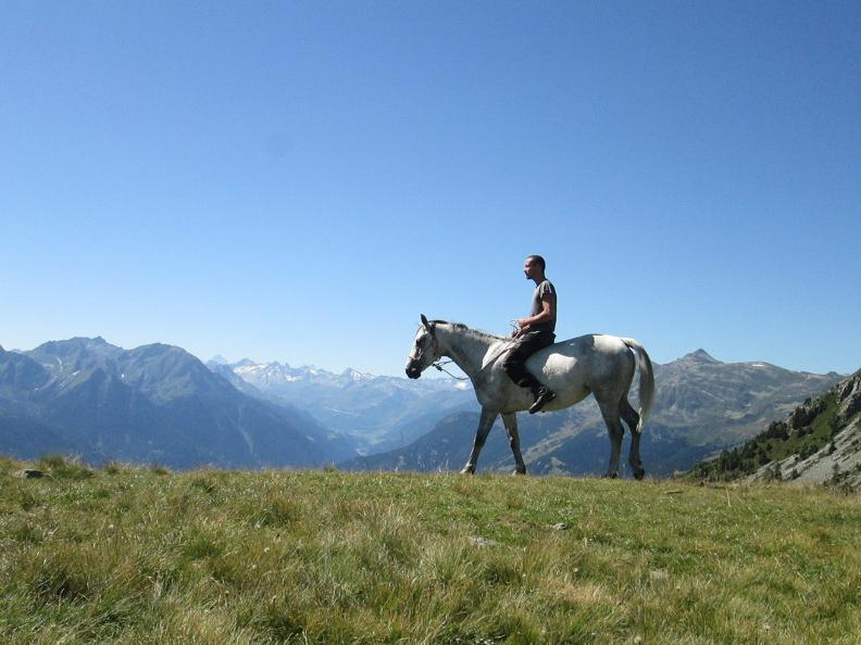 Image 6 - Horse rides in Valle Leventina: Leventina Western