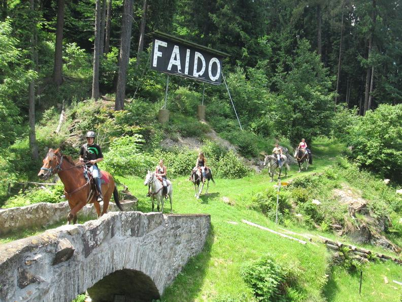 Image 7 - Horse rides in Valle Leventina: Leventina Western
