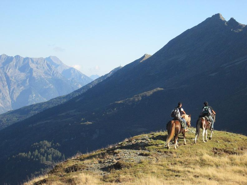 Image 8 - Horse rides in Valle Leventina: Leventina Western
