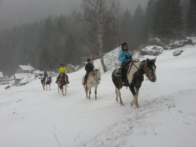 Image 1 - Horse rides in Valle Leventina: Leventina Western