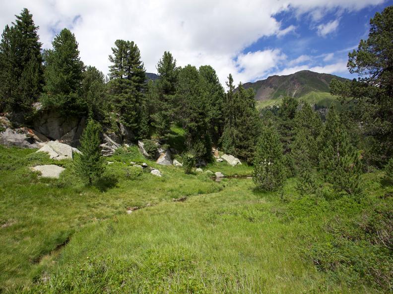 Image 2 - Naturetum - Centro Pro Natura Lucomagno