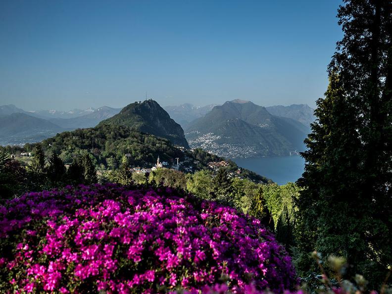 Image 0 - Park San Grato - Carona