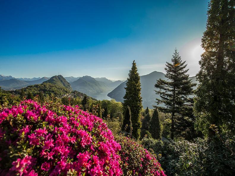 Image 6 - Park San Grato - Carona
