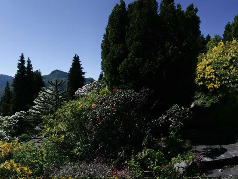 Image 4 - Führung Parco San Grato