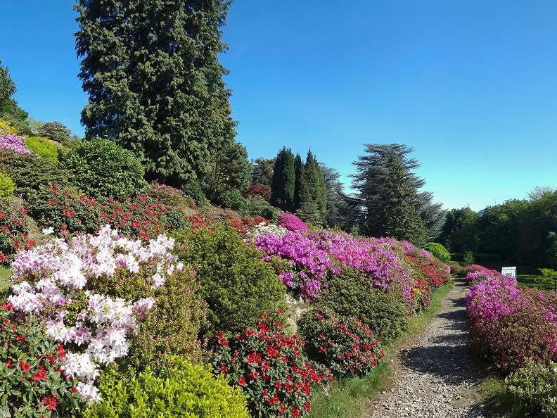 Image 4 - Park San Grato - Carona