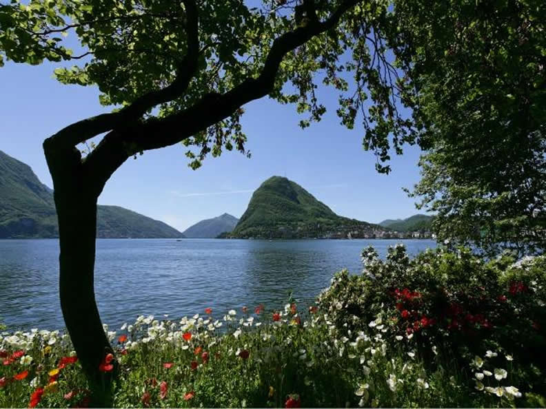 Image 1 - Parks and gardens in the Lake Lugano Region