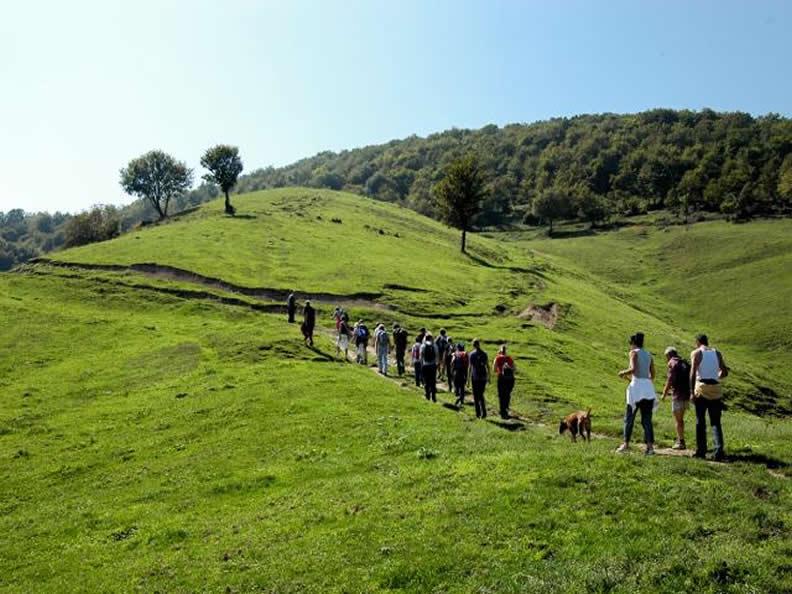Image 1 - Walking Ticino