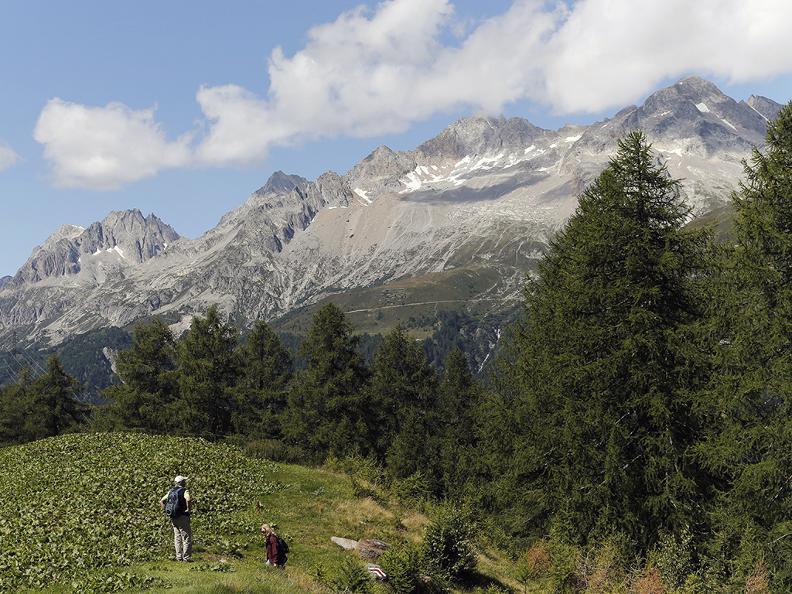 Image 4 - Wanderferien: Alpenpässe Weg, Olivone - Ulrichen