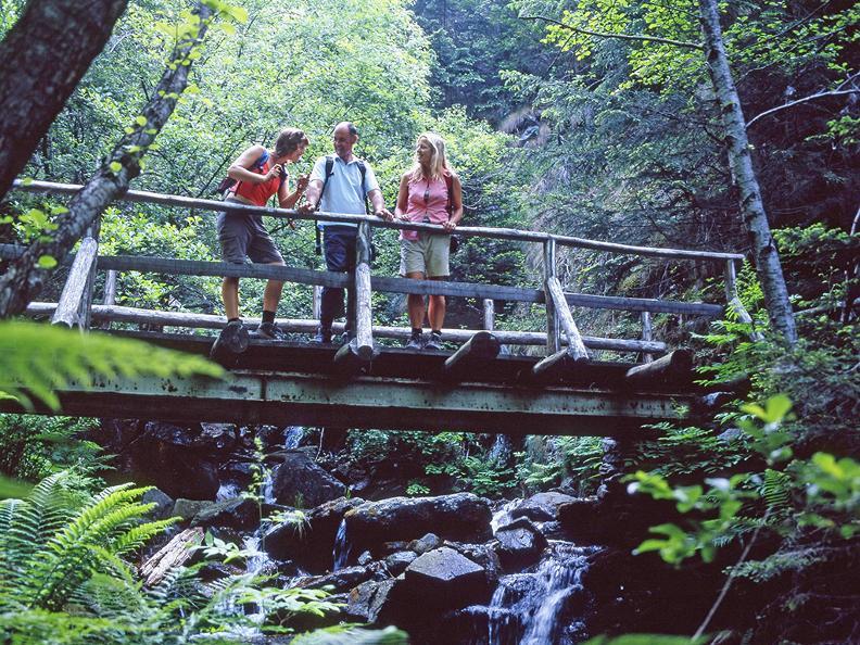 Image 5 - Hiking holidays: Trans Swiss Trail, Gotthard Pass & Strada Alta