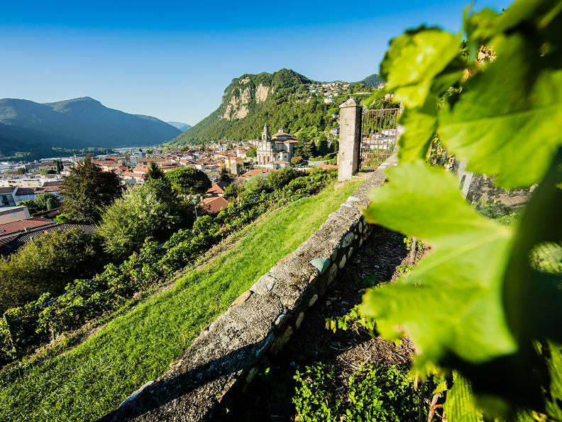 Image 4 - Guided tours for schools discovering Mendrisio