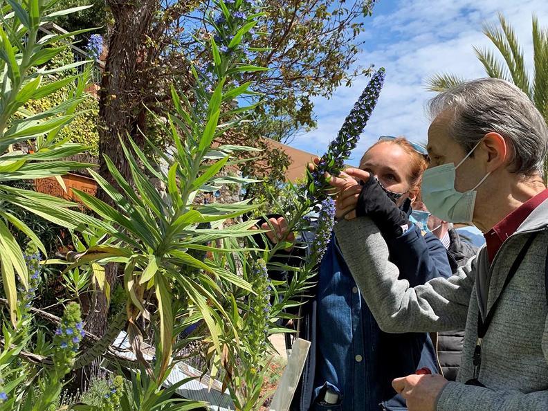 Image 0 - Îles de Brissago - Une visite guidée pour les aveugles et les malvoyants