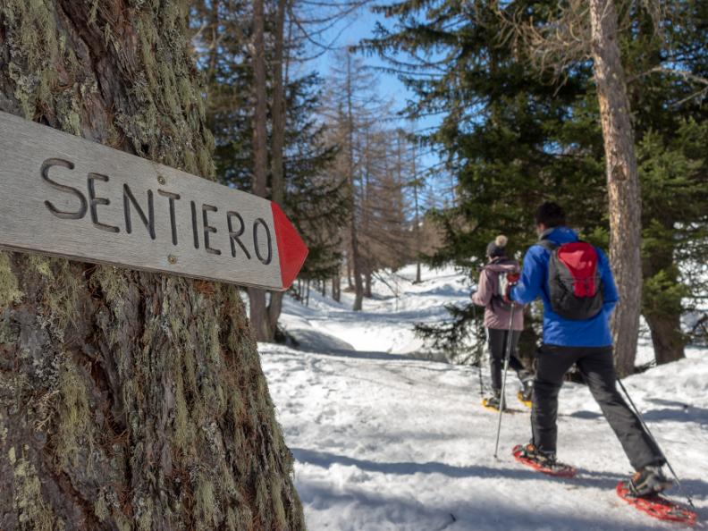 Image 2 - Snowshoe trails in Ticino