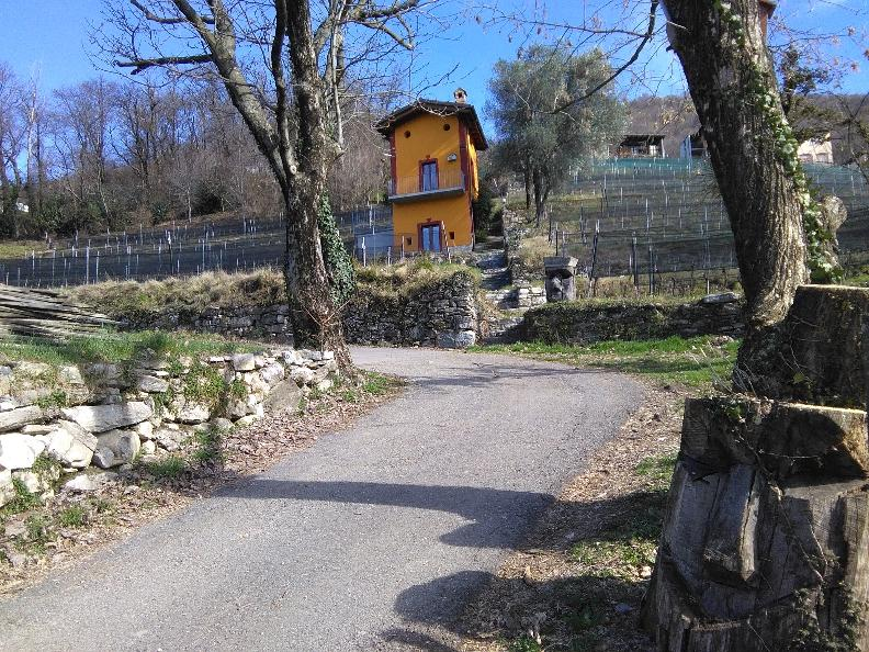 Image 0 - Vineyards and traditions of the Muggio Valley