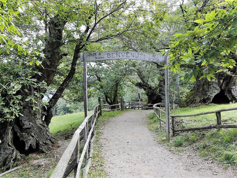 Image 3 - Serpiano - Monte San Giorgio