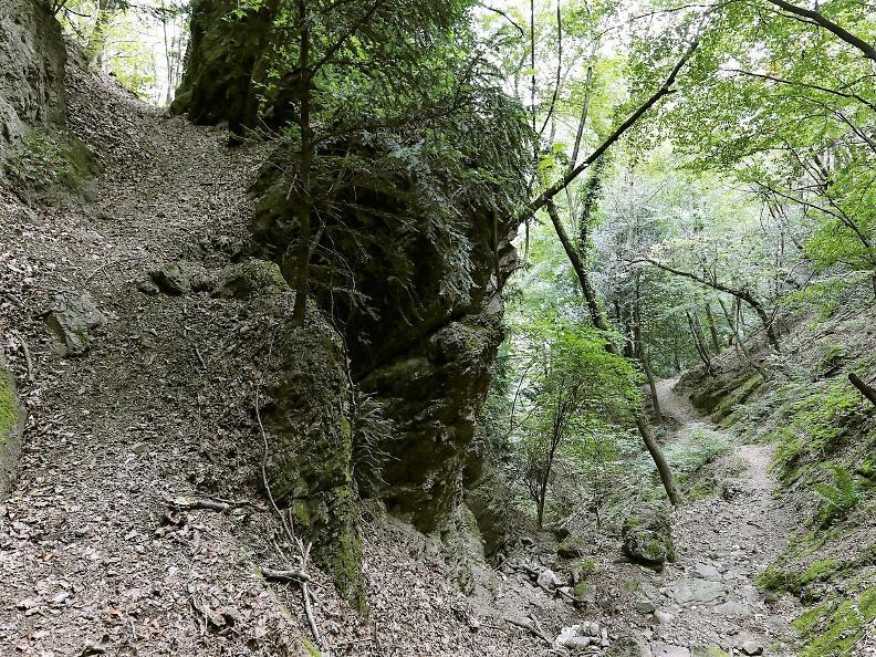 Image 7 - Serpiano - Monte San Giorgio