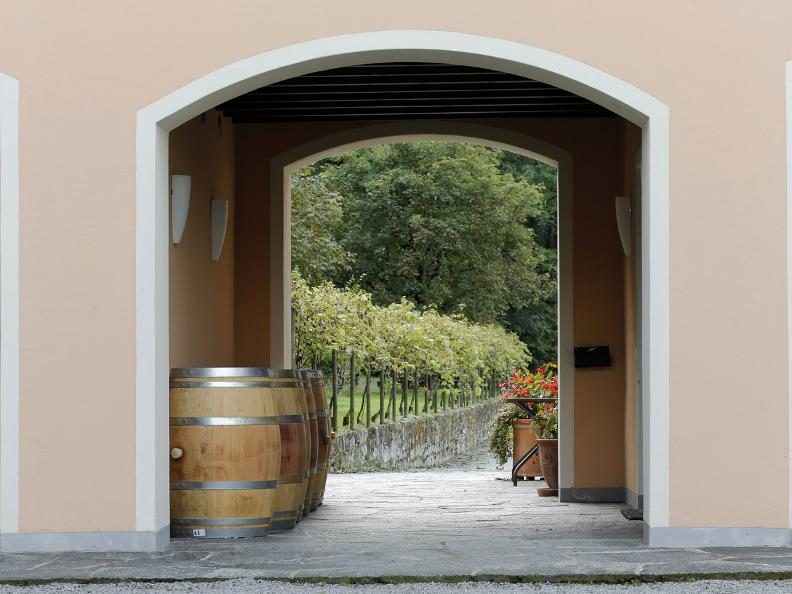 Image 3 - Seseglio: itineraries among vineyards