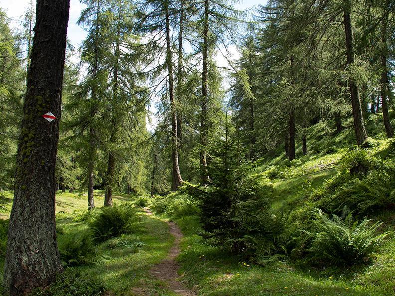 Image 3 - The Strada degli Alpi of Bedretto Valley